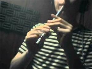 「サルタバルタ」をティン&ローホイッスルで吹いてみた