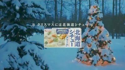 田中麗奈ハウス食品北海道シュー2