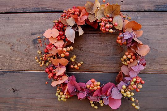 autumn colors・野バラ