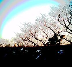 photo by Keiju SOTOGUCHI