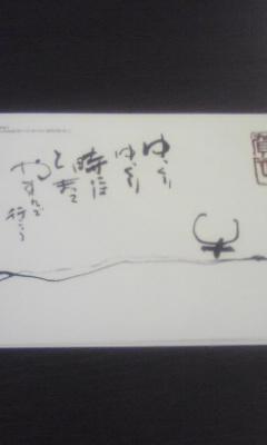 081006_2008~01.jpg