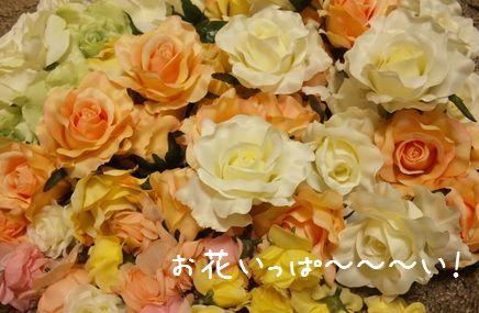 お花いっぱいでーす