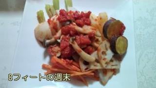 根菜のトマト煮2