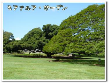 モアナルア・ガーデン2