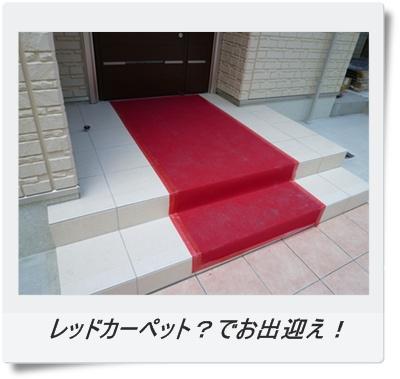 レッドカーペット?