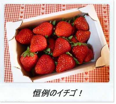 毎年恒例イチゴ!