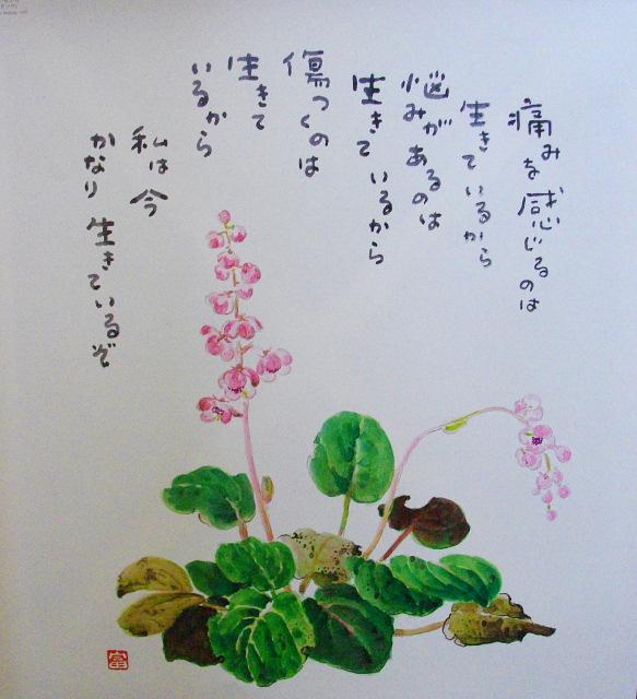 星野富弘の画像 p1_34