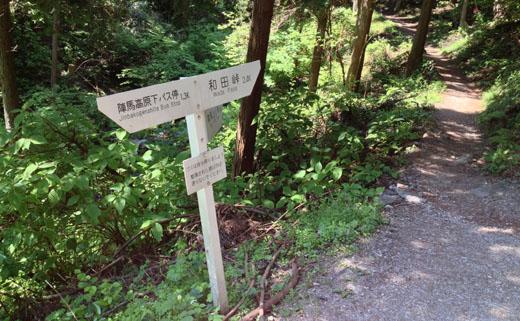 新登山道入口