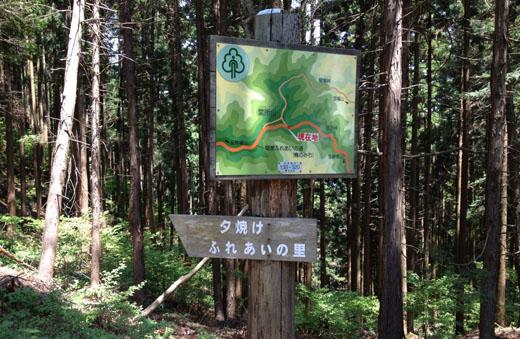 堂所山への分岐