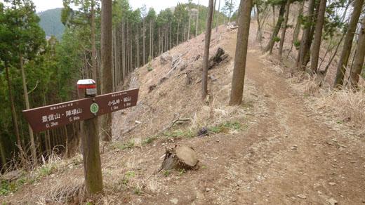 やや急な下りのハイキングコース