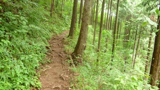 明王峠へ登る
