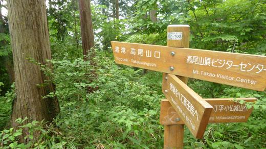 稲荷山コースで下山
