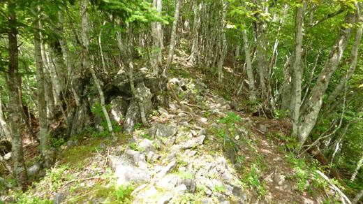 岩場の尾根