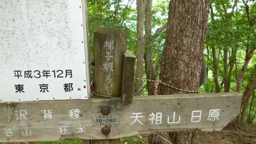 梯子坂のクビレ