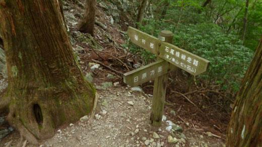 稲村岩分岐