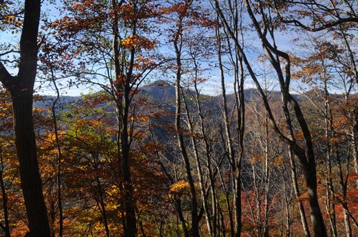 タワ尾根から見える鷹ノ巣山