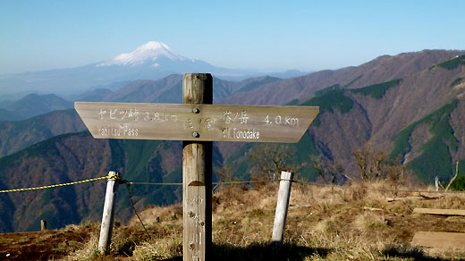 三ノ塔の山頂標と富士山