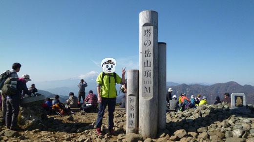 塔ノ岳山頂記念写真