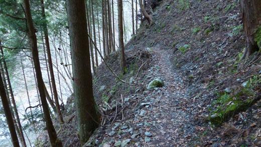 左側は渓流