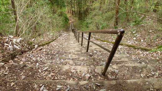 名物の階段