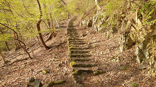 登山口の木段