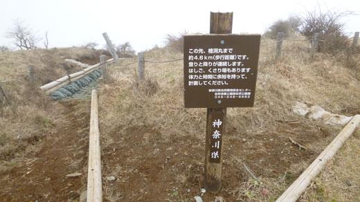 西丹沢方面への道