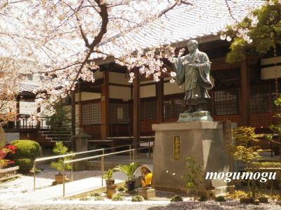 日蓮像と桜