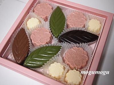 桜チョコ2