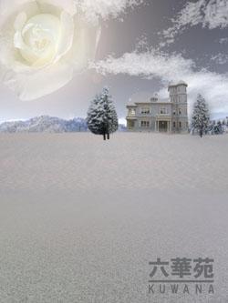 冬の六華苑