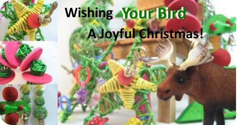 愛鳥さんにメリークリスマス