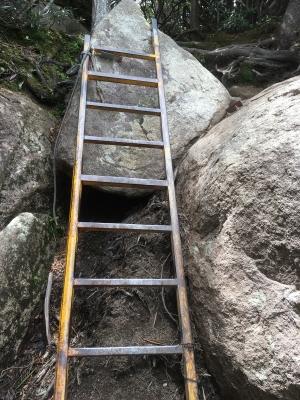 瑞牆山 ラストのはしご