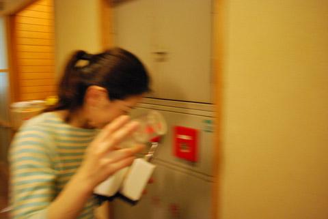 有馬温泉 ねぎや陵楓閣 2010.06.18.02