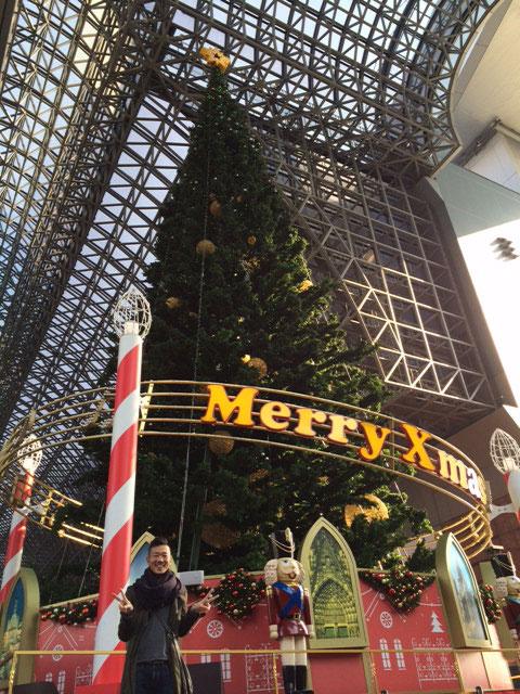京都 クリスマスツリー 京都ブライダルサロン