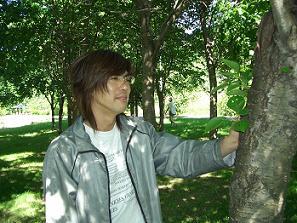 たんぽぽ博士と大きな木