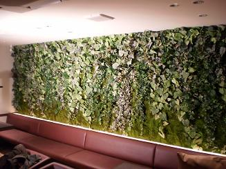 グリーンの壁面