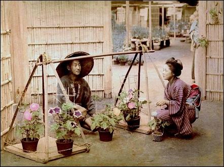 江戸時代の花屋7