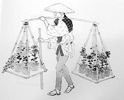 江戸時代の花屋8