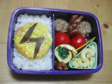 06/05/11●電気エネルギー弁当