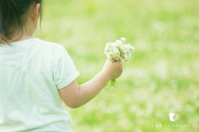 お花摘み0624a1