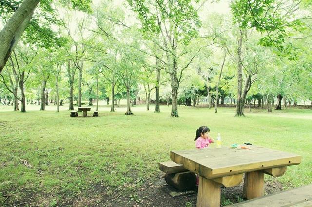 夢の島公園a8