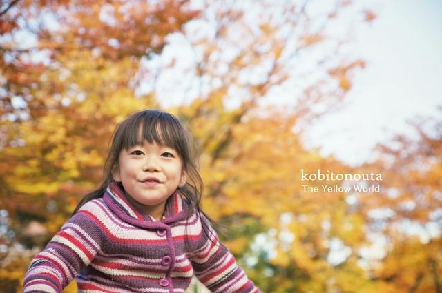 落ち葉狩り2012a2
