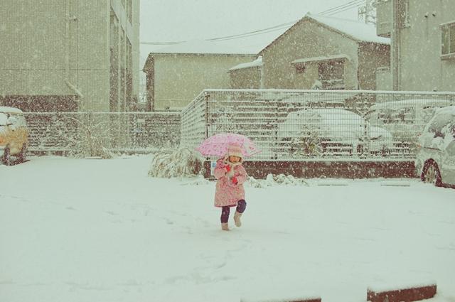 大雪2013a5