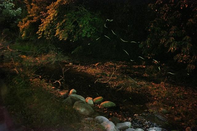 温泉2013a8