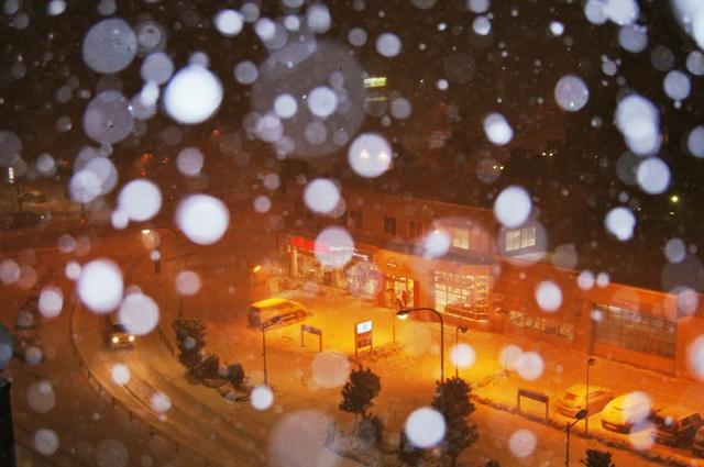 大雪の日b1