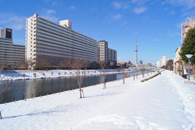 大雪の日b4