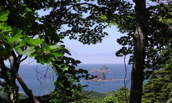 金光寺山遊歩道からの眺め