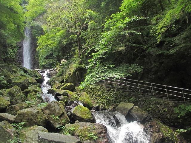 養老の滝�