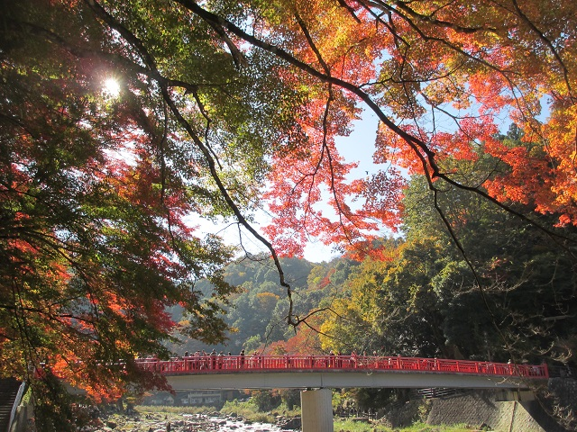 香嵐渓の紅葉�