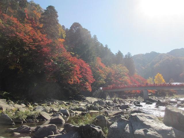 香嵐渓の紅葉㉑