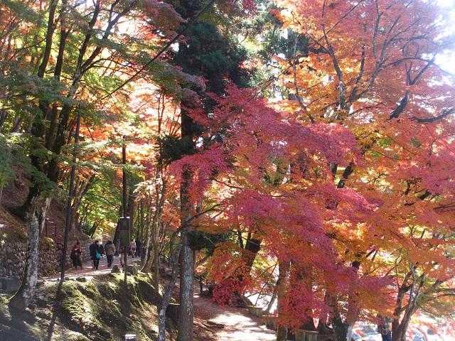 香嵐渓の紅葉㉔